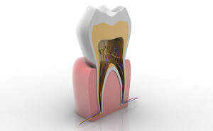 Endodontic treatment by an Ramon, CA endodontist Dr. Khandaqji helps you maintain your natural smile,